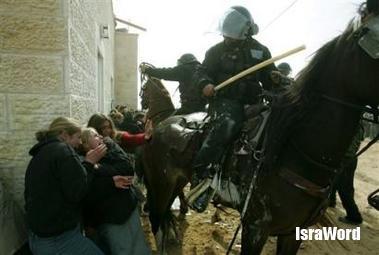 israel_police_attaks_a_settlers.jpg (16.74 KB)